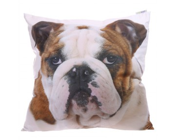 Decorative Bulldog Cushion