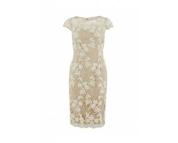 Gina Bacconi Coffee and Cream Lace Dress
